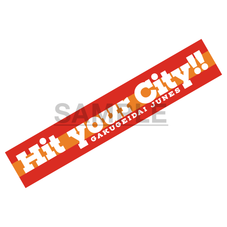 3rd LIVE TOUR「Hit your City!!」ライブタオル